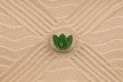 Stones and green leaf on the sand with dunes and waves. Spa and zen concept. View from above royalty free stock images