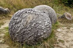 Stones that grow. Trovants,concretions,or in popular language stones that grow near Costesti village, Valcea county,Romania Royalty Free Stock Photography