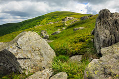 Stones on the hillside Royalty Free Stock Image