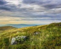 Stones on the hillside Royalty Free Stock Photos