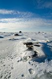 Stones in the ice on the Baltic Sea coast Stock Image