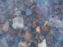 Stones in ice. Icy rocks on the shore of the river in winter day Royalty Free Stock Image