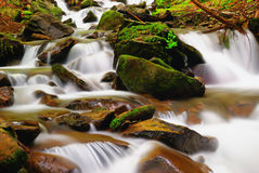 Stones Into The Water Royalty Free Stock Photo