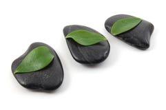 Stones isolated on white background Stock Image