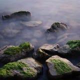 Stones in the water. Stones in the lake Balaton, Hungary Stock Image