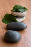 Stones and Leaves. Against the Wooden Surface Royalty Free Stock Photo