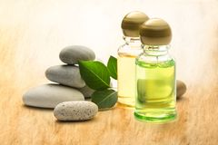 Stones, leaves and shampoo bottles Stock Image