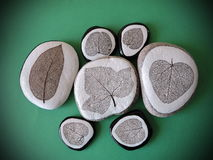 Stones with leaves skeletons. Natural stones with different shape leaves skeletons Royalty Free Stock Images
