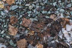 Stones leaves snow frost dry brown gray black texture winter cold froze stock images