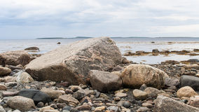 Stones in low tide. The coast of White Sea, Karelia,Russia Stock Images