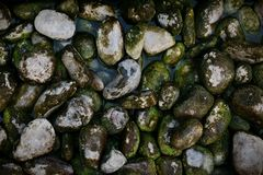 Stones, many that are arranged naturally. royalty free stock image