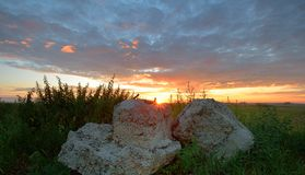 Stones in meadow on background of sunrise Stock Photos