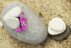 Stones for meditation Royalty Free Stock Images