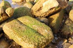 Stones Mediterranean Sea in Jaffa. Mediterranean Sea in Jaffa, Israel Stock Image