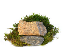 Stones and a moss Stock Image