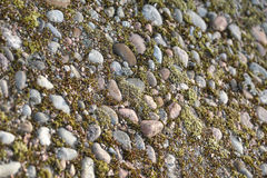 Stones and moss background Royalty Free Stock Photography