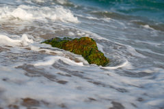 Stones with moss in the surf Stock Images