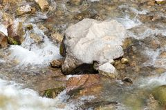 Stones in the mountain river.  Stock Images