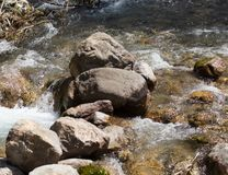 Stones in the mountain river. In the park in nature Royalty Free Stock Photo