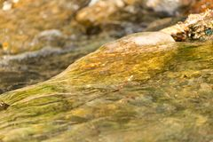 Stones in the mountain river. Photo of an abstract texture Stock Images