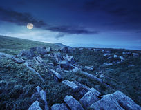 Stones on the mountain top at night. Dandelions anmong white sharp stones on the hillside meadow on top of mountain range at night in full moon light Royalty Free Stock Photo