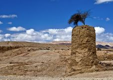 Free Stones Of The Negev Royalty Free Stock Photos - 13666338