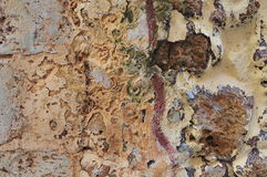 Stones and old paint Royalty Free Stock Image