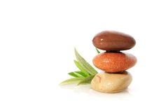 Stones and olive branch. Royalty Free Stock Photography