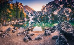 Free Stones On The Coast Of Braies Lake At Sunrise In Autumn Royalty Free Stock Photos - 134716438