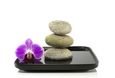 Stones and orchid in balance Royalty Free Stock Photography