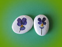 Stones with pansy flowers Stock Photos