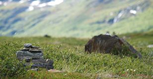 Stones on a path. Mountain path in the North Scandinavia Royalty Free Stock Image