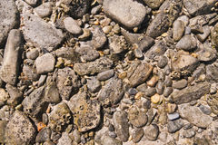 Stones pattern texture on the beach Royalty Free Stock Image