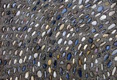 Stones in Pavement Royalty Free Stock Image
