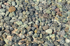 Stones or pebbles under water Royalty Free Stock Photography