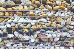 Stones and pebbles wall in wire mesh stock photography