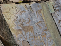 Stones with of people and animals petroglyphs. Prehistorical petroglyphs carved in rocks. Images of people and animals. Siberian Altai Mountains, Russia royalty free stock photos