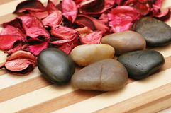 Stones and petals Royalty Free Stock Photos