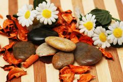 Stones,  petals and flowers for aromatherapy session Royalty Free Stock Image