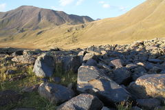Stones with petroglyph's by Asian ancients of nomads. Ancients petroglyph's on the stone in Tien shan Mountains. NARYN region Stock Photo