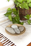 Stones and plants in a spa. A closeup of stones and plants in a spa Stock Photo