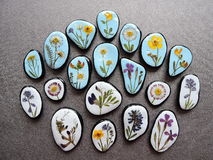 Stones with pressed flowers. Natural stones with pressed wild flowers on black leather Royalty Free Stock Photo