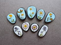 Stones with pressed flowers. Natural stones with pressed wild flowers on black leather Stock Photography
