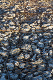 Stones protected by chain link Royalty Free Stock Images