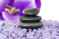 Stones with purple flower Royalty Free Stock Images