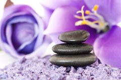 Stones with purple flower Stock Photography