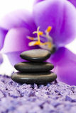 Stones with purple flower Royalty Free Stock Photo