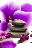 Stones with purple flower Royalty Free Stock Image