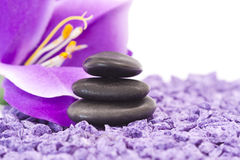 Stones with purple flower Royalty Free Stock Photos