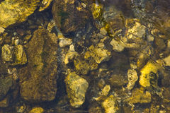 Stones in the river Royalty Free Stock Photos